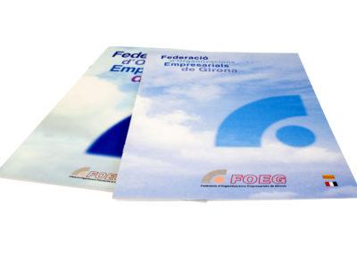 Federació d'Organitzacions Empresarials de Girona